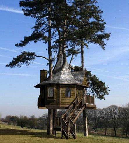 kućica na drvetu